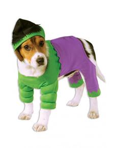 Costume Hulk chien