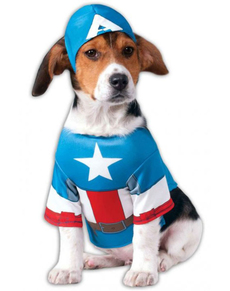 Costume Captain American chien
